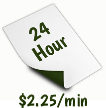 24 Hour Transcription Service (1 day).